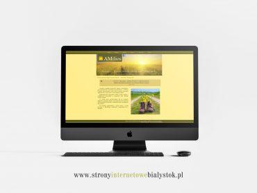 Strony Internetowe Białystok – Amilios
