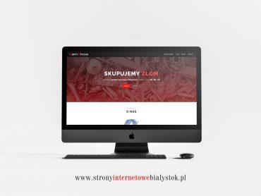 Strony Internetowe Białystok – Kamshow